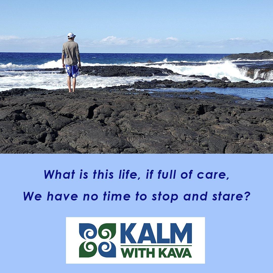 Fullsize Of Kalm With Kava
