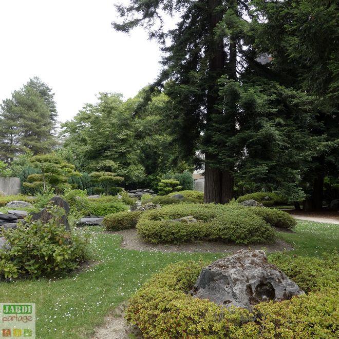 Jardipartage on Twitter \ - Jardin Japonais Chez Soi