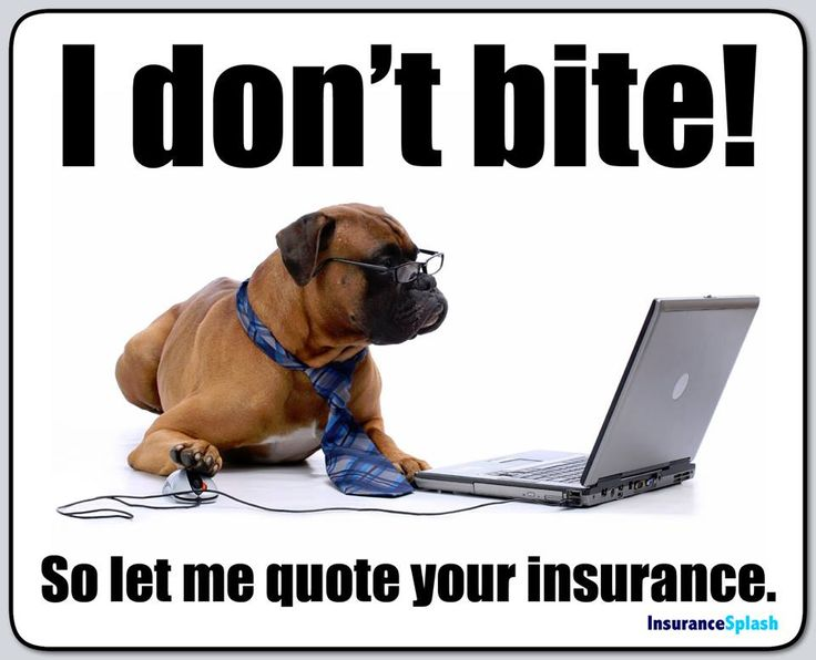 Best 25+ Insurance humor ideas on Pinterest Farmers life - proper running form