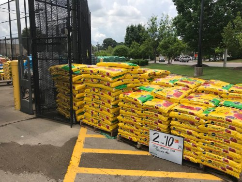 Medium Of Potting Soil Home Depot