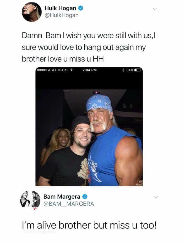 Hulk Hogan Twitter Brother Theresa Brothertheresah Twitter
