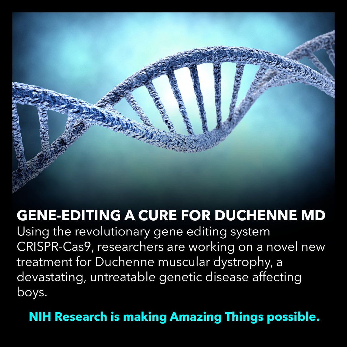 Duchenne Muscular Dystrophy Nih United4medresearch On Twitter