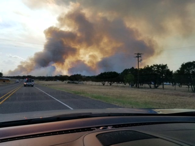 texas forest service incident report