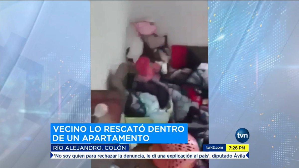Videos Para Bebes De 9 Meses Tvn Noticias On Twitter