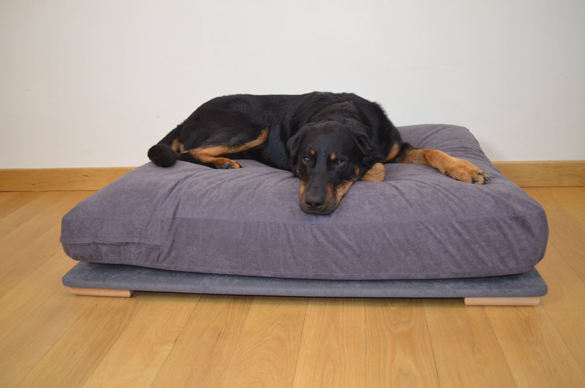 Big Bed Company Big Dog Bed Company On Twitter
