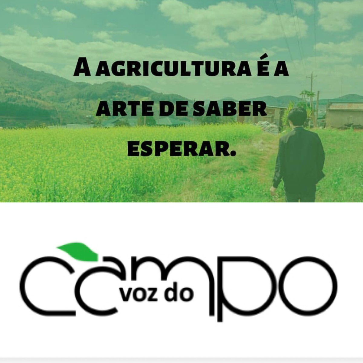 Revista Vozdocampo On Twitter