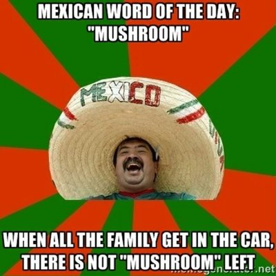Mexican Words Daily on Twitter \