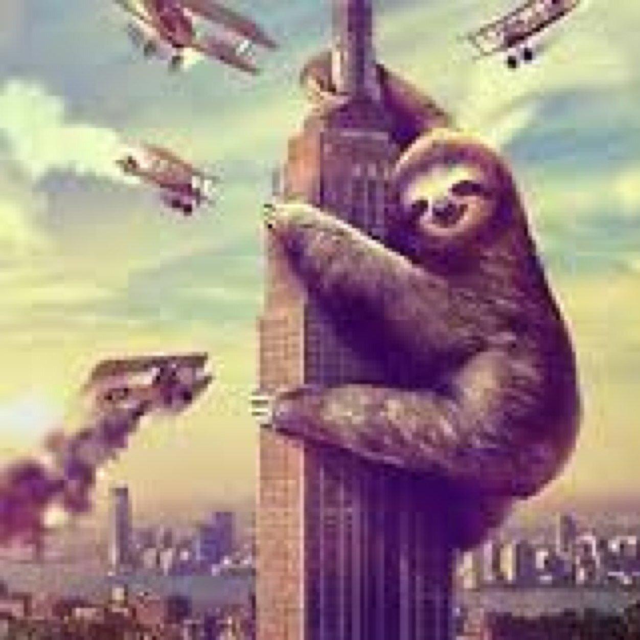 Sloth Wallpaper Cute King Sloth King Sloth32 Twitter