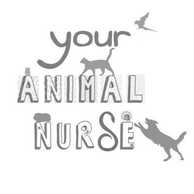 Your Animal Nurse (@youranimalnurse) Twitter