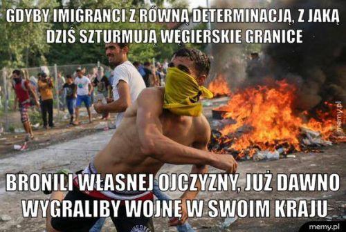 źródło: memy.pl