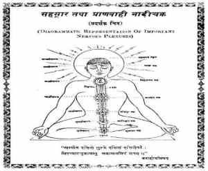 वैदिक षटचक्र मंडल हिंदी पुस्तक मुफ्त पीडीऍफ़ डाउनलोड | Vaidik Shatchakra Mandal Hindi Book Free PDF Download