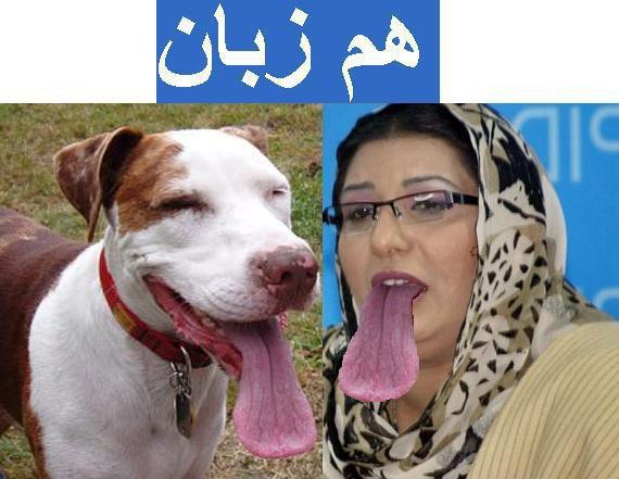 Asif Ali Hd Wallpapers Charsi Kaddi Na Marsi Funny Wallpapers Of Pakistani Leaders