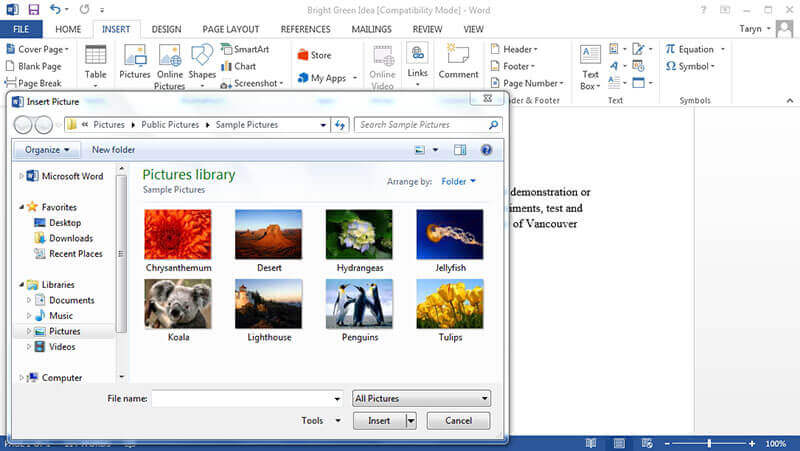 How to Reverse an Image in Word Wondershare PDFelement - on word