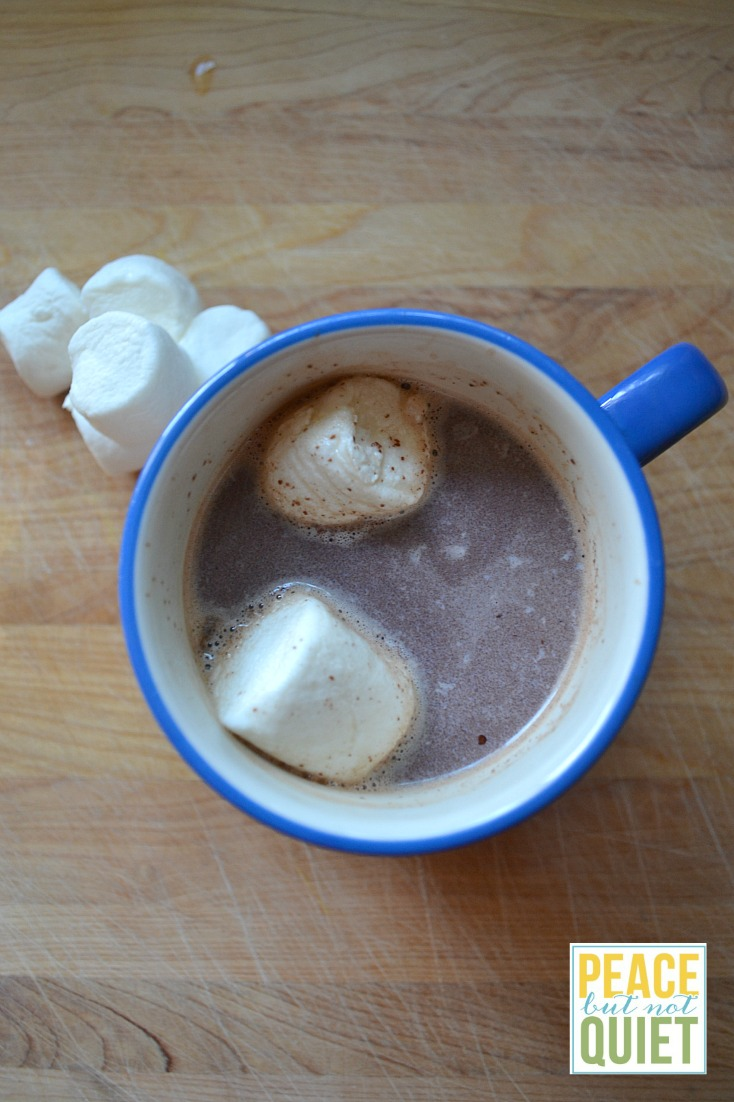 This is my family's hot chocolate recipe.