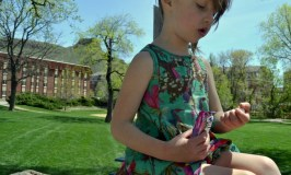 What to Pack for a Trip to the Park