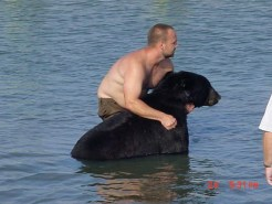 Black-Bear-rescue-09