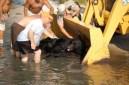 Black-Bear-rescue-11