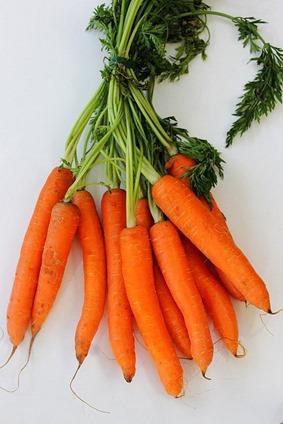 Carrot Fries (1)