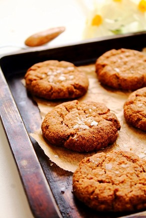 Almond Butter Stevia Cookies (15)
