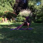 Peacock Tree Yoga backbend prep sequence