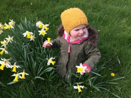 We find joy (and Tulsi!) in daffodils