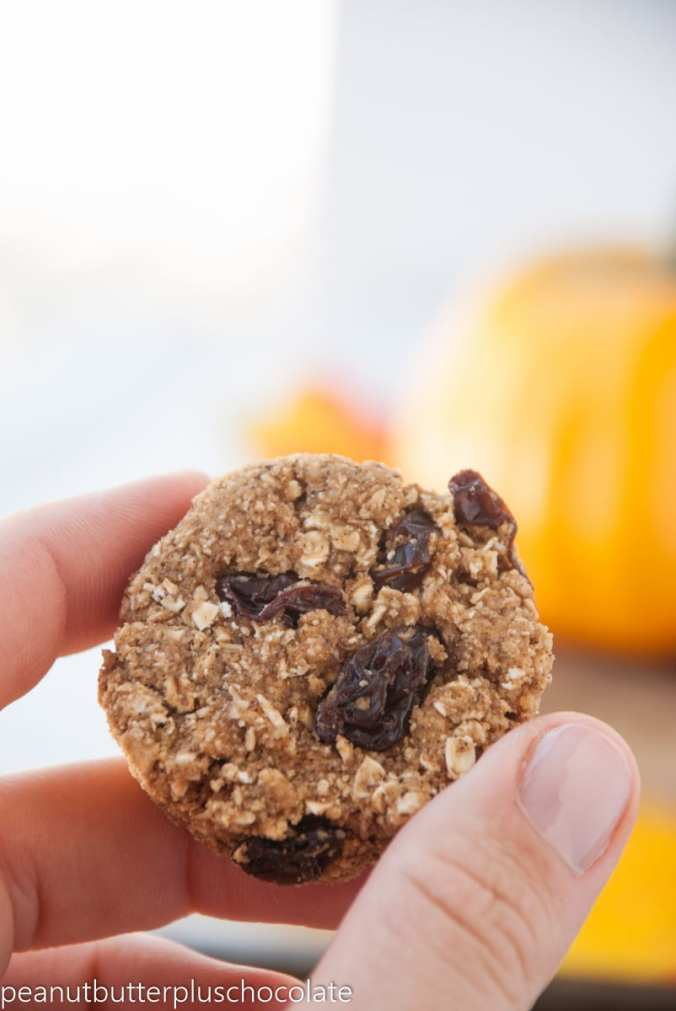 Cinnamon-Oatmeal-Cookies4