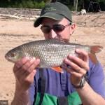 6 Montages pour la pêche des spécimens