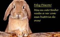 COELHO_FELIZ_PASCOA_WEB