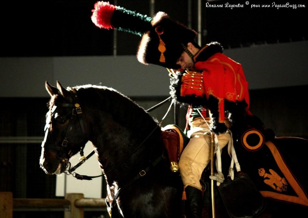 Salon du cheval les hussards irish cob en libert for Salon du master