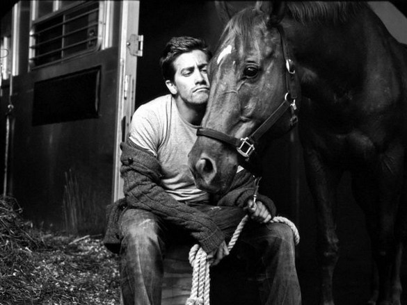 Jake Gyllenhaal and a horse