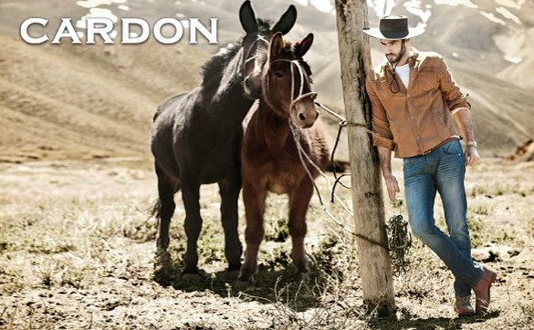 Cardon fall-winter 2013