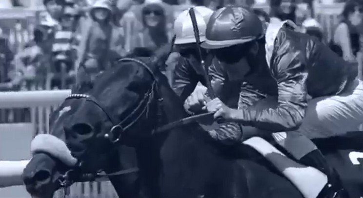 Longines Conquest Classic Horse Racing [Commercial 2013]