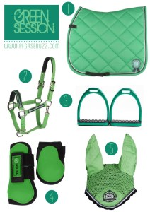 www.pegasebuzz.com | Equestrian Fashion : green session