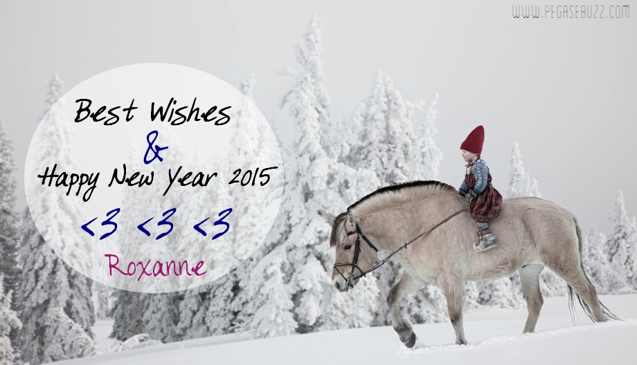Bonne année 2015 - Happy New Year 2014 - equestrian