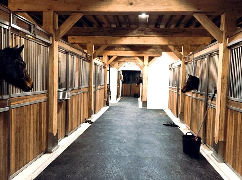 www.pegasebuzz.com | Dream barn : Equimov presents Haras de Pachavert