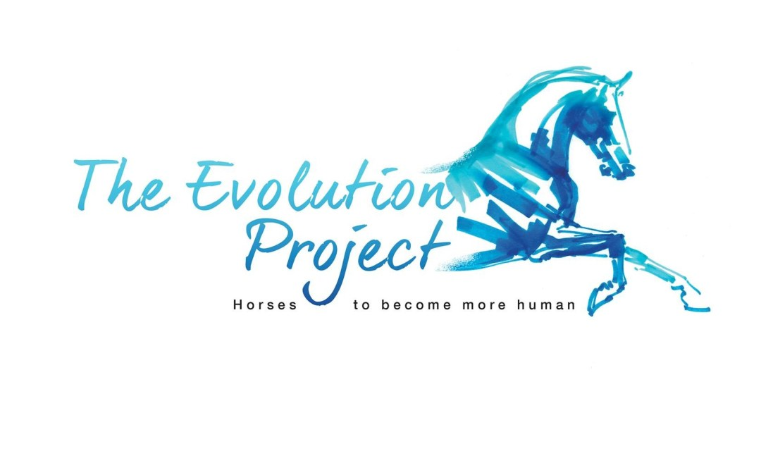 www.pegasebuzz.com | Pierre Beaupère Dressage lance The Evolution Project