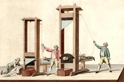 guillotine-bicubic-1