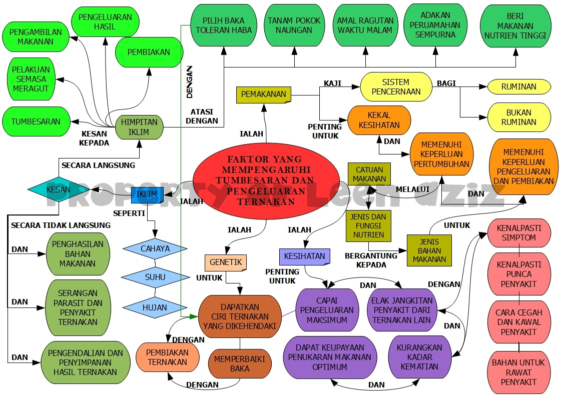 Peta Konsep Bab Tingkatan