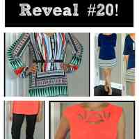 Stitch Fix Reveal - #20!