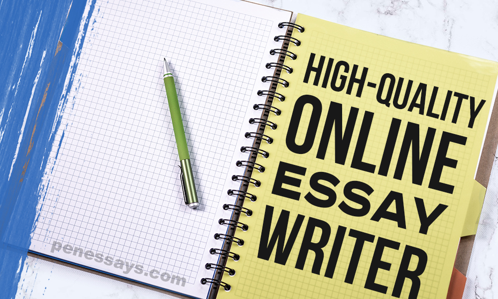 Essay Writer Online Professional High-Quality Service penessays