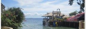 Bluereef Resort Shoreline in Mactan