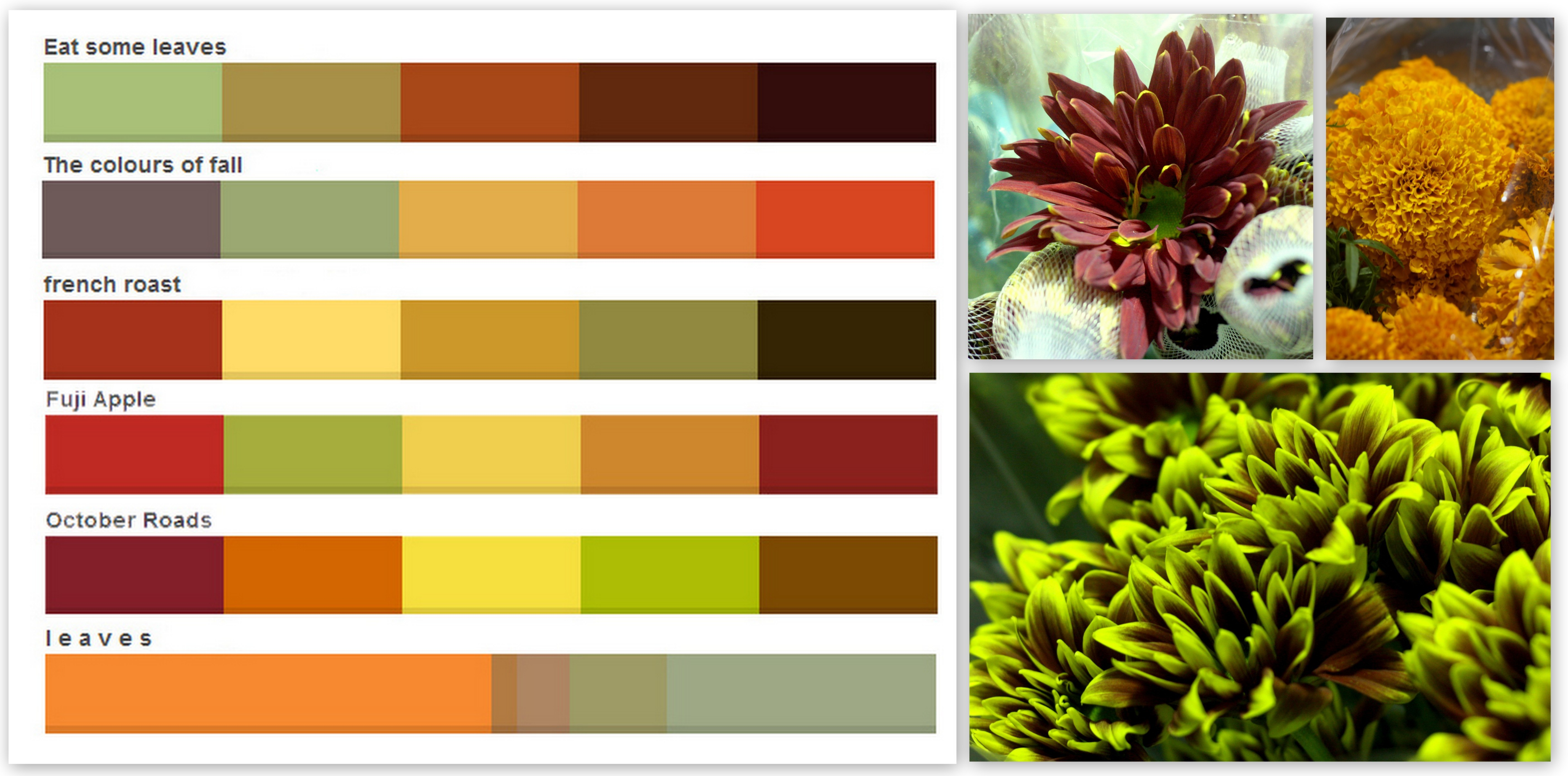 Fullsize Of Autumn Color Palette
