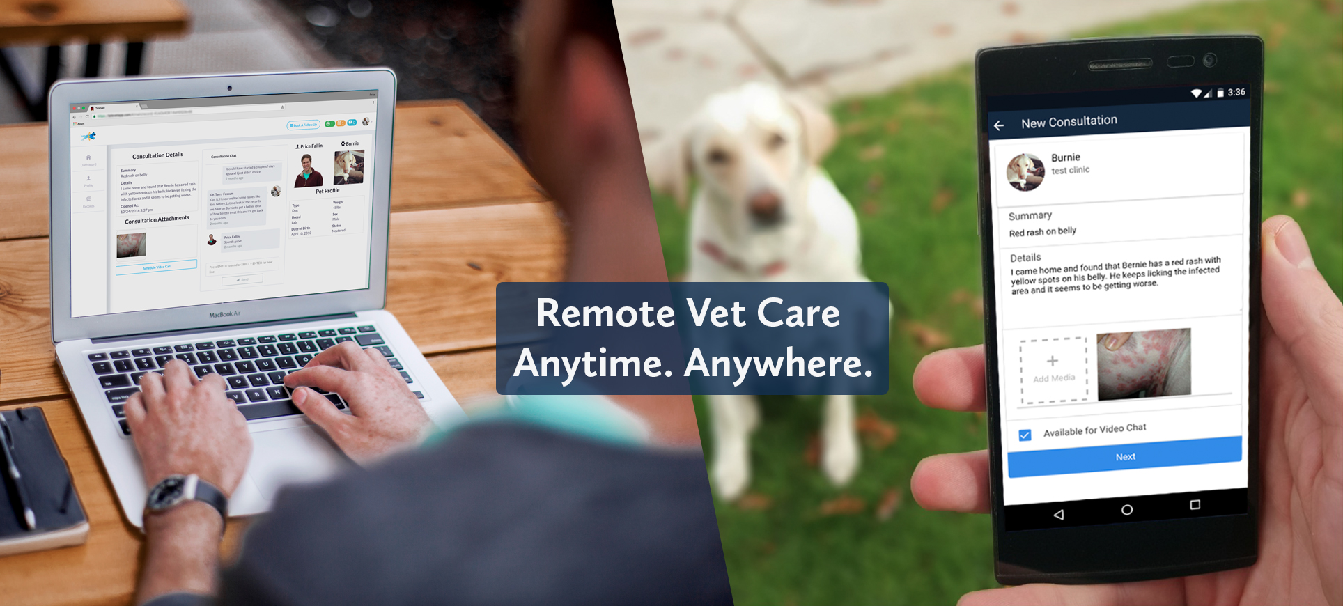 Mobile Vet Near Me Penny Paws Veterinarian Near Me Arlington Ft Worth