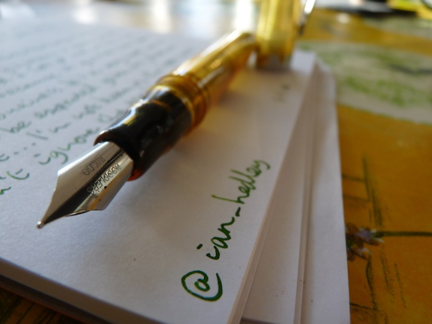 Noodler Ahab fountain pen