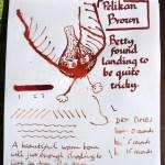 Pelikan Brown ink Inkling