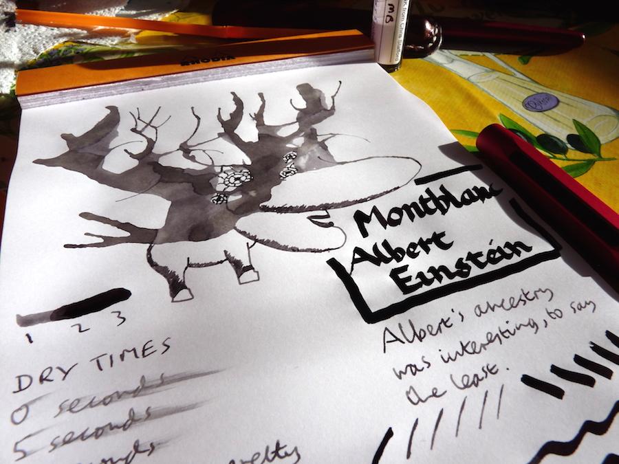Montblanc Albert Einstein ink review
