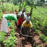 Project participants in Kenya are trained to measure soil carbon systematically. Photo by Seth Shames/EcoAgricultur Partners.