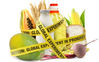Tell the FDA GMOs are NOT Natural!