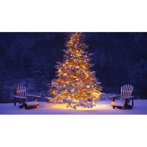 Medium Crop Of Diy Outdoor Christmas Decorations