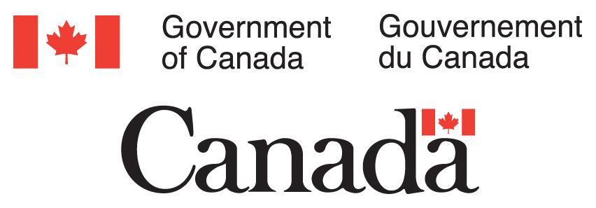 cv gouvernement
